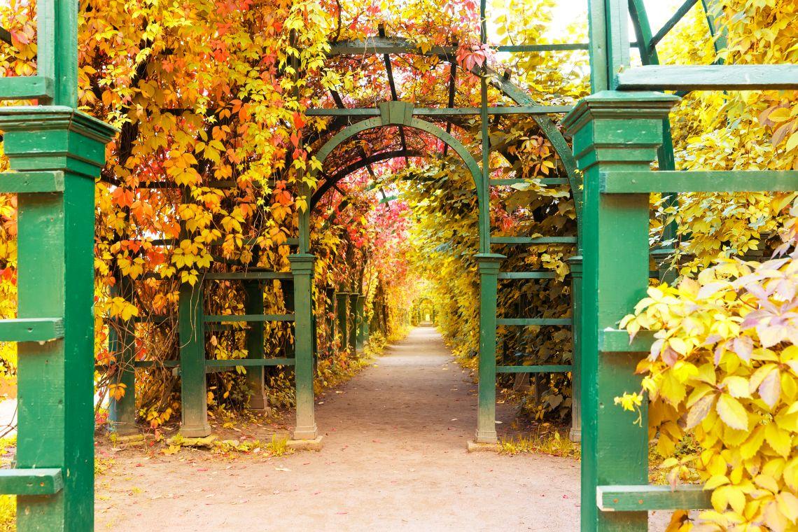 Im Park von Peterhof